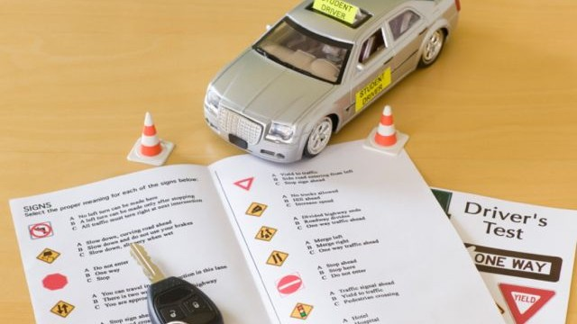 Check Online Driving Licence Verification Status DLIMS Punjab